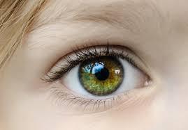 Ögonfärg